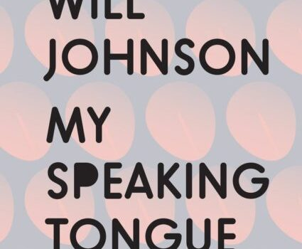Review of Will Johnson's poetry collection